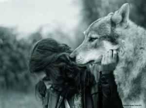 Hera-the-She-wolf-1-300x222